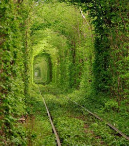 tunnel-of-love_87503_w300